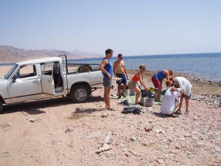 Octopus World,Dahab,Sinai-Nord ab Dahab,Ägypten