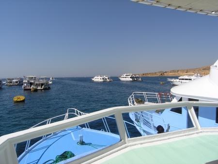 Sinai Dive Club,Naama Bay,Sharm el Sheikh,Sinai-Süd bis Nabq,Ägypten