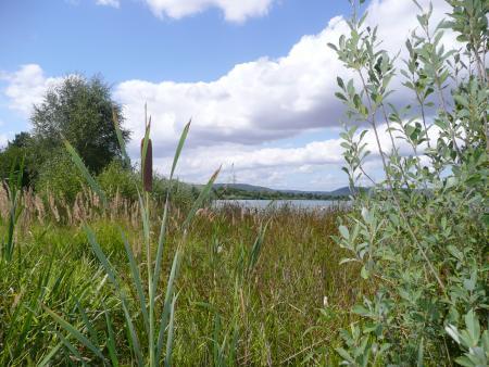 Singlis See,Hessen,Deutschland