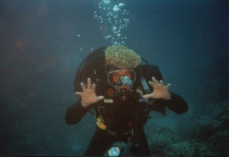 Down Under Dive,Cairns,Australien