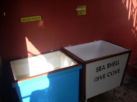 Sea Shell Dive Centre (ex Dive Cove),Mellieha,Malta