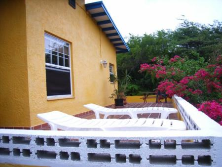 Dos iguana,Tras Montana 120,Bonaire,Niederländische Antillen