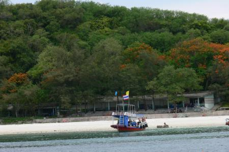 Siam Gulf Divers,Pattaya,Golf von Thailand,Thailand