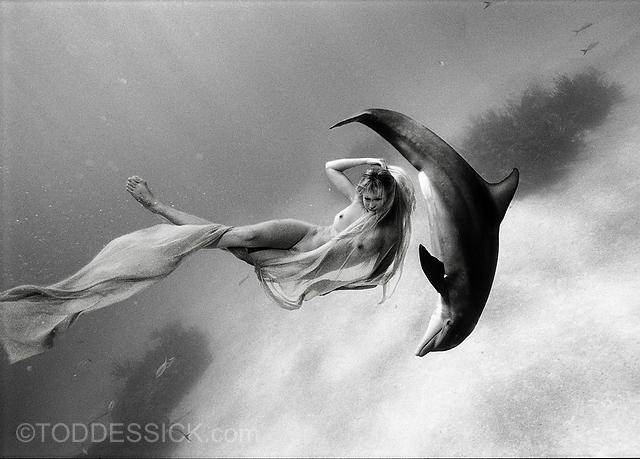 Nacktmodel spielt mit Delfin - Todd Essick - Beginnings