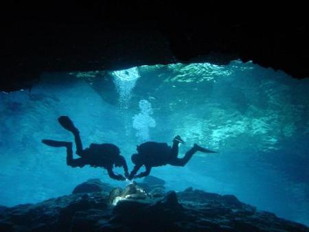 Pro Dive Mexico,Catalonia Riviera Maya & Yucatan Beach,Puerto Aventuras,Mexiko