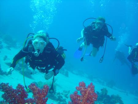 Sharm Divers,Sharm el Sheikh,Sinai-Süd bis Nabq,Ägypten