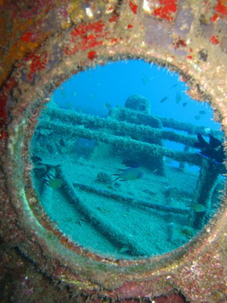 Gran Canaria,Mogan Wreck-Dive,Spanien
