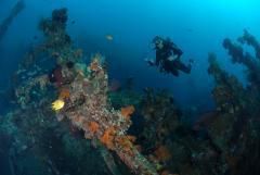 Hondaafushi Diving Center Werner Lau,Haa Dhaalu Atoll,Malediven