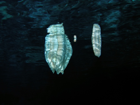 Gri Gri Divers Bayahibe,Höhle - La Cueva ´El Chicho´,Bayahibe,Dominikanische Republik