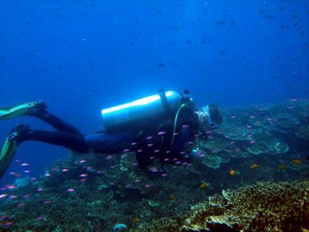 Kasai Village Beach Resort & Oxygene Divers,Moalboal,Cebu,Philippinen