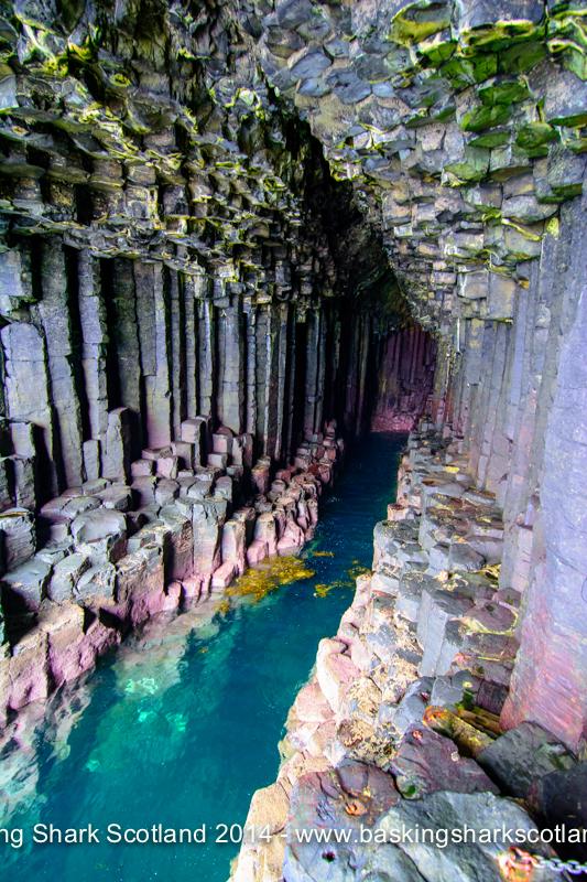 Basaltstruktur von Fingal's Cave, Fingal's Cave, Staffa, Isle of Mull, Schottland, Tauchen, Schnorcheln, Großbritannien