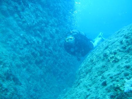 Dolphin Dive,Alanya,Türkei
