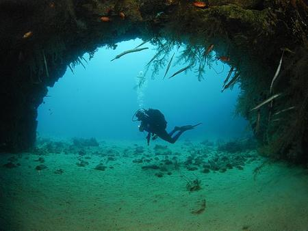 Orca Dive Club Cabo Verde,Sal,Kap Verde
