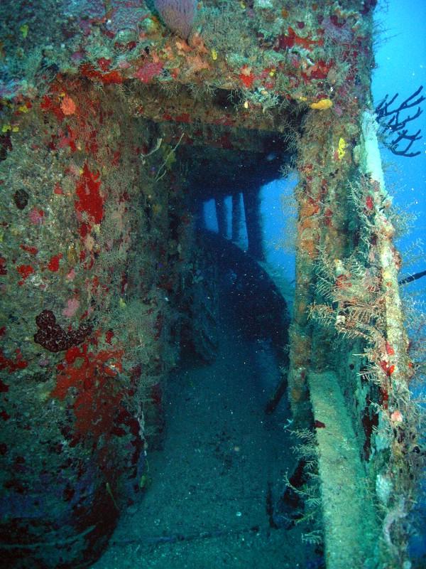 Bayahibe - Wreck St. George, St. George Wreck,Dominikanische Republik