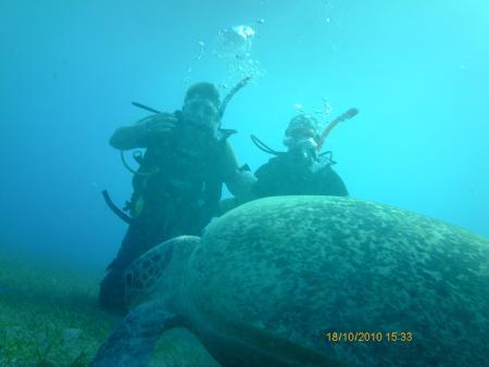 Dive Too Marsa Alam,Marsa Alam und südlich,Ägypten