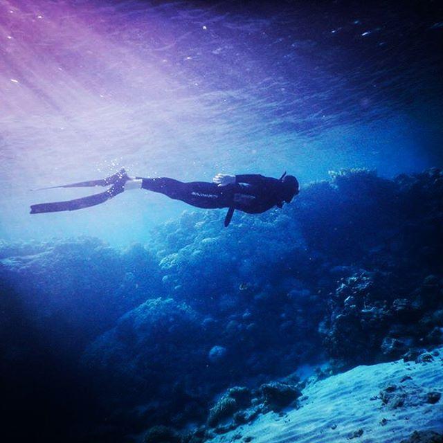 Freediving Dahab, freediving, dahab, apnea, Desert Divers, Dahab, Ägypten, Sinai-Nord ab Dahab