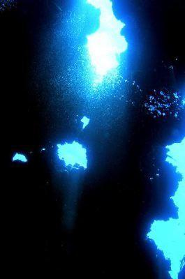 Oceanpro,Lahami Bay,Marsa Alam und südlich,Ägypten