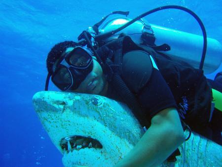 Black Sharks,Hurghada,Ägypten