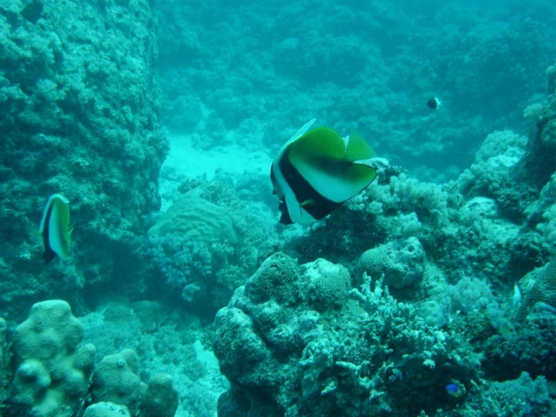 Grand Baie, Grand Baie,Mauritius
