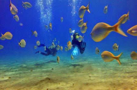 Dive College Lanzarote,Playa Blanca,Lanzarote,Kanarische Inseln,Spanien