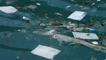 Plastic waste in the med sea - GOB