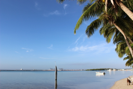 ASOBUCA - Hotel Dominican Bay - Caribbean Divers,Dominikanische Republik