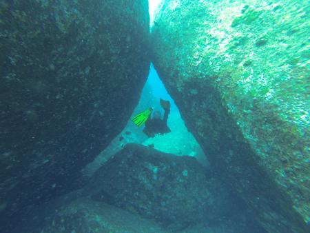 Sea Turtle Divers - Khao Lak,Andamanensee,Thailand