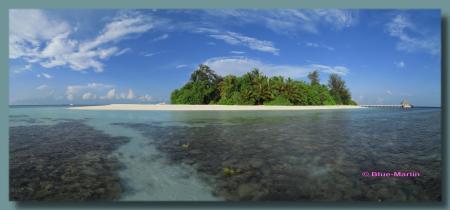 Bathala Ari-Atoll,Bathala,Diving Center Werner Lau,Nord Ari Atoll,Malediven