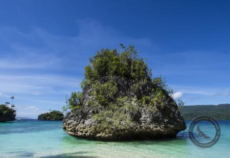 Triton Bay Divers,Allgemein,Indonesien