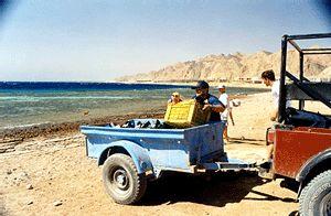 Dive In,Laguna Hotel,Dahab,Sinai-Nord ab Dahab,Ägypten