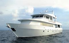 M/V Caribbean Pearl II,DivEncounters Alliance,Honduras