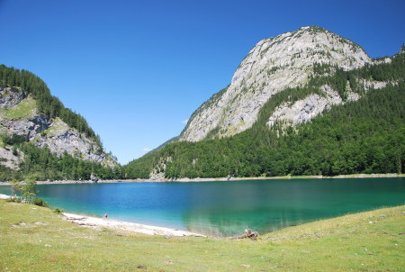 Hohe Holzmeisteralm,Hinterer Gosausee,Österreich