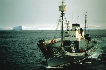 Japanese whaling ship in the Antarctic. © Mark Votier, WDC