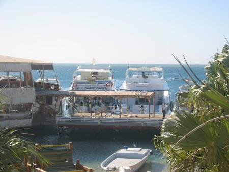 Al Mashrabiya Diving Center,SWDF,Hurghada,Ägypten