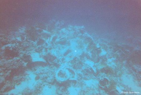 Yolanda Reef / Shark Reef & Anemone City (Sharm El Sheikh),Ägypten