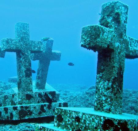 Buceo-Sub La Palma,Kanarische Inseln,Spanien