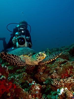 MV Seaqueen,Malediven