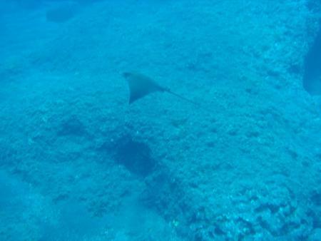 Atlantic 28°,Fuencaliente,La Palma,Kanarische Inseln,Spanien