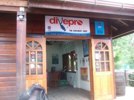 DivePro Barbados,Barbados