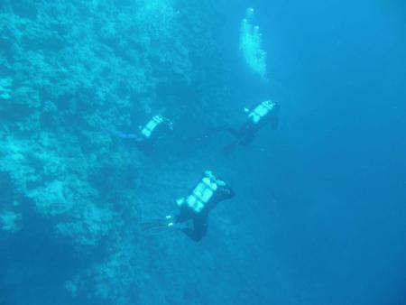 Blue Ocean Dive,Dahab,Sinai-Nord ab Dahab,Ägypten