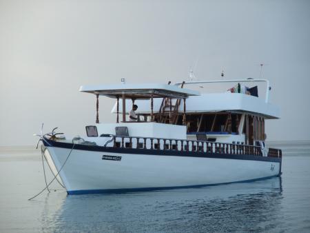 Kefi (ex Hammerhead I),Malediven