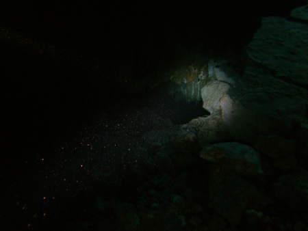 Kefalonia,Karavomilos cave/cavern,Griechenland
