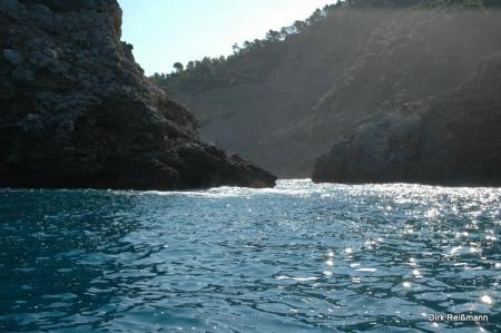 Octopus,Puerto de Sóller,Mallorca,Balearen,Spanien