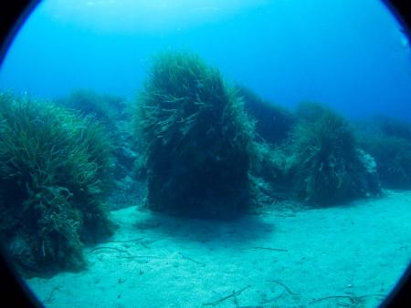 Sardinia Divers,Orosei,Sardinien,Italien