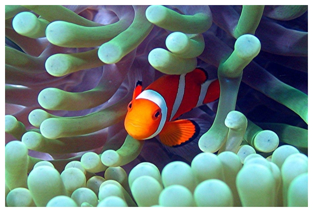 Phi Phi Island Nationalpark, Phi Phi Islands,Thailand