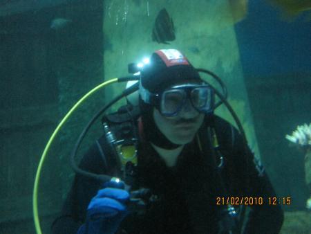 High-Life-Divers,München,Bayern,Deutschland
