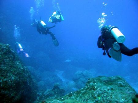 Atlantis Divers,Fernando de Noronha,Brasilien