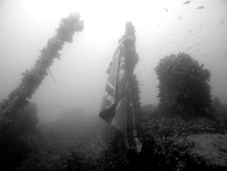 H2O Divers,Ramla Bay,Malta