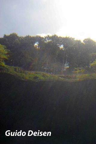 schnorcheln im Pulvermaar, Pulvermaar,Gillenfeld,Rheinland Pfalz,Deutschland