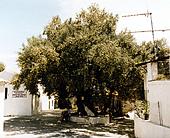Zakynthos,Griechenland